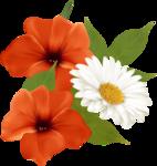 цветы-(275).png
