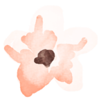 flower13.png