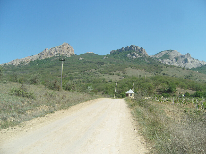 вершины Карадага на фоне виноградников