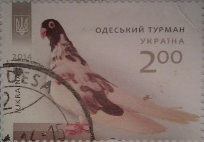 2014 N1399-1402 Голуби фауна СЕРИЯ одесск турман 2.00