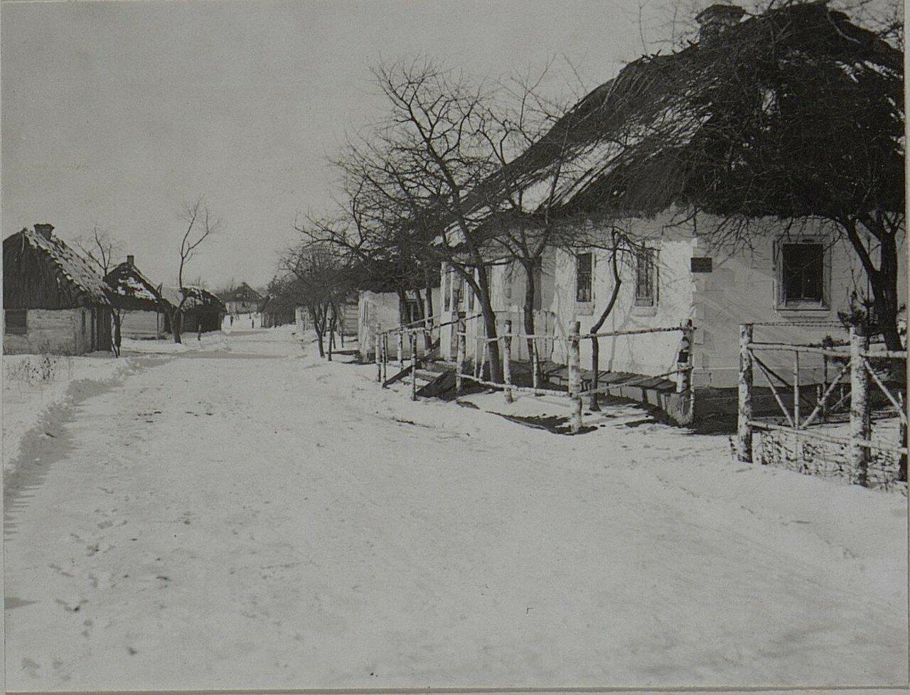 Павловичи. Улица в северной части села