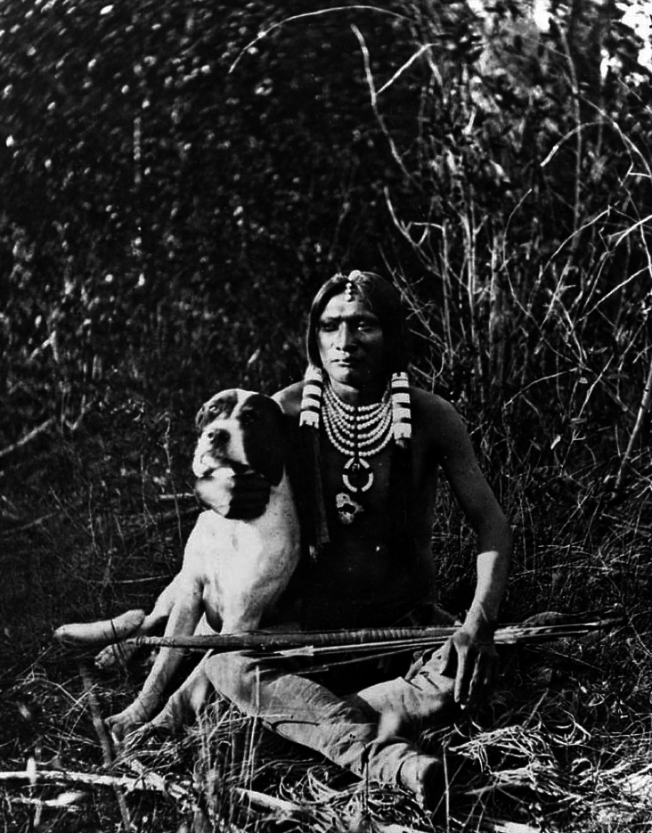 J.K.Hillers     Unidentified Ute Hunter and His Dog, Uintah Valley, Wasatch Mountains, Utah     1873.png