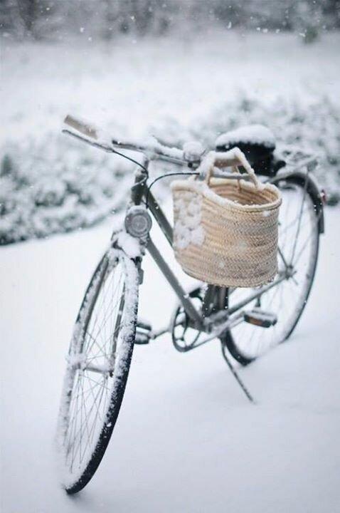Зимнее.jpg