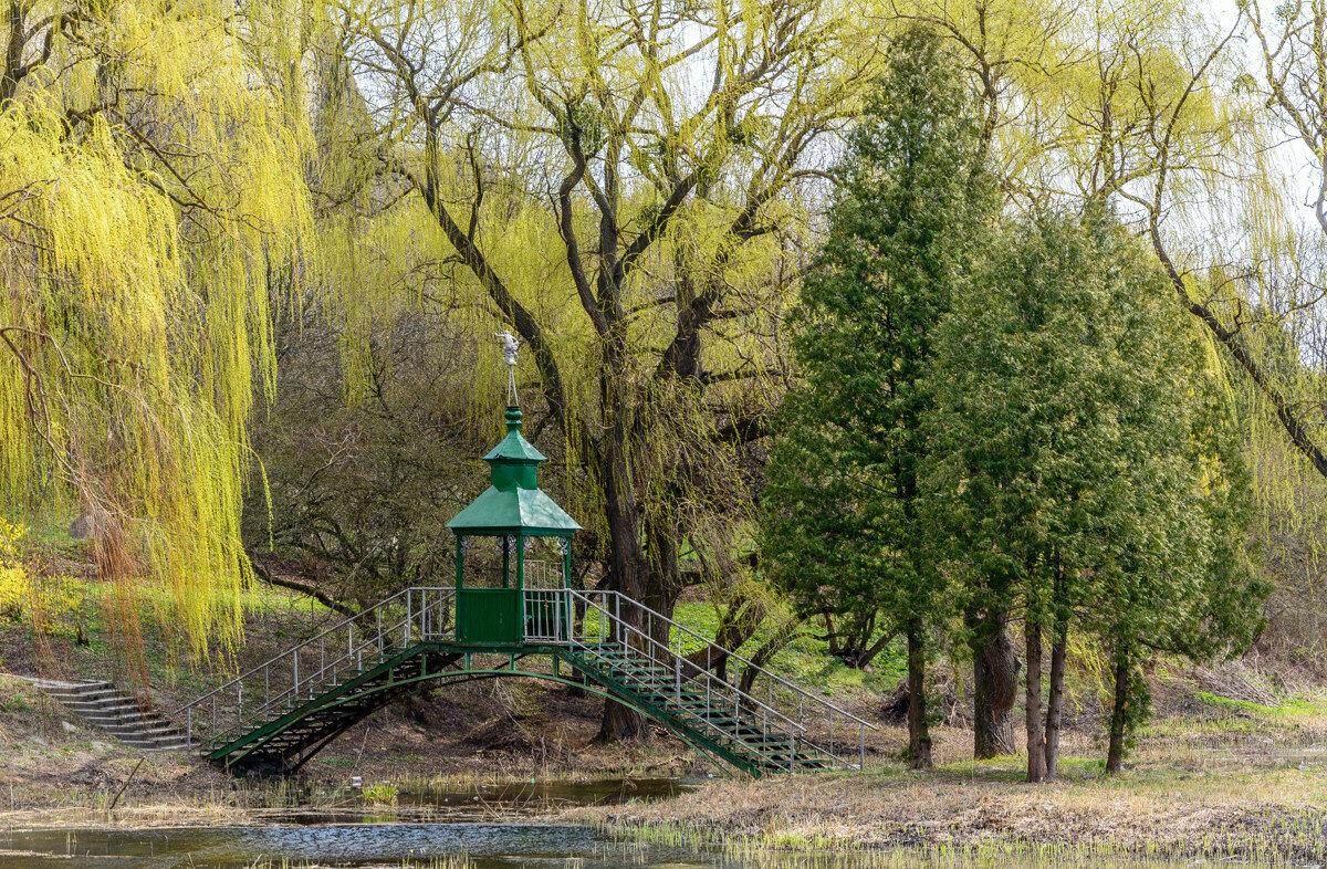 Парк - Олесский замок