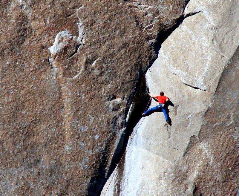 внешний слой сонник спускаться с крутой горы смесовое