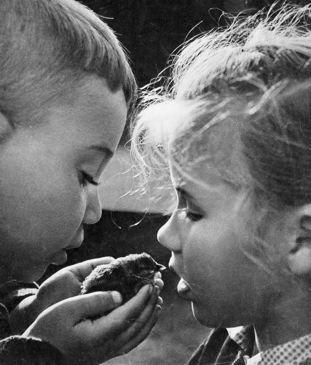 Нашли птенчика. Фотограф Юрий Приведенцев, 1964