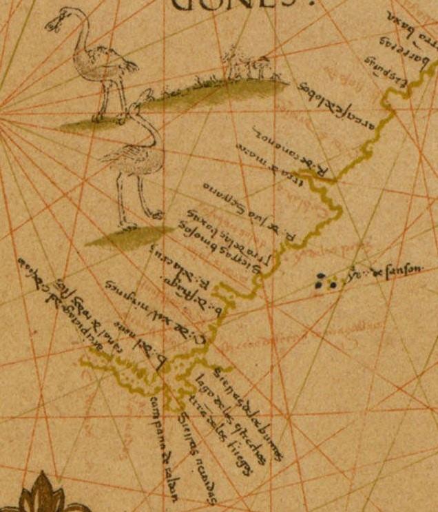 1529.jpg