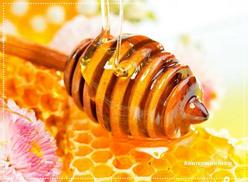 Какой мед выбрать и для чего