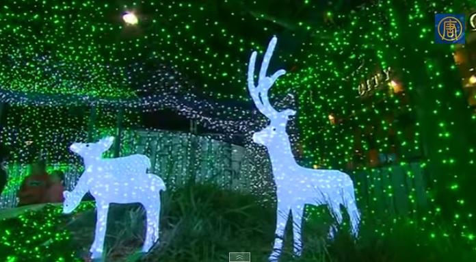 Рождественские огни в Австралии бьют рекорды