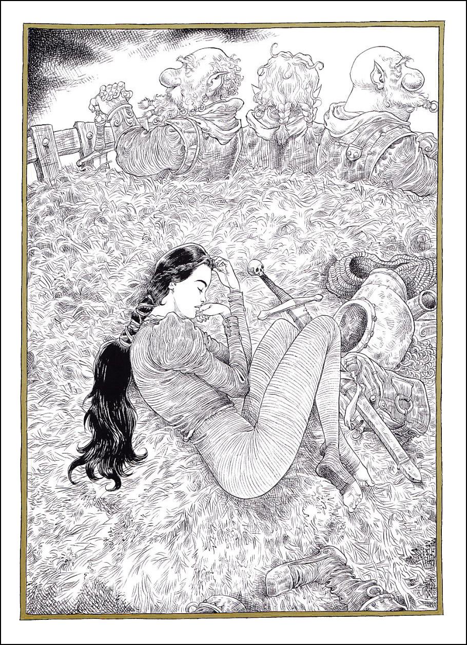 The Sleeper and the Spindle/ Neil Gaiman, Chris Riddell