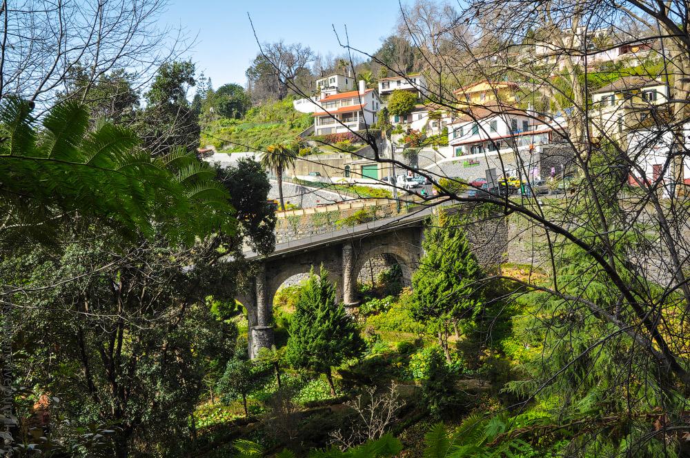 Madeira-Garten-(3).jpg