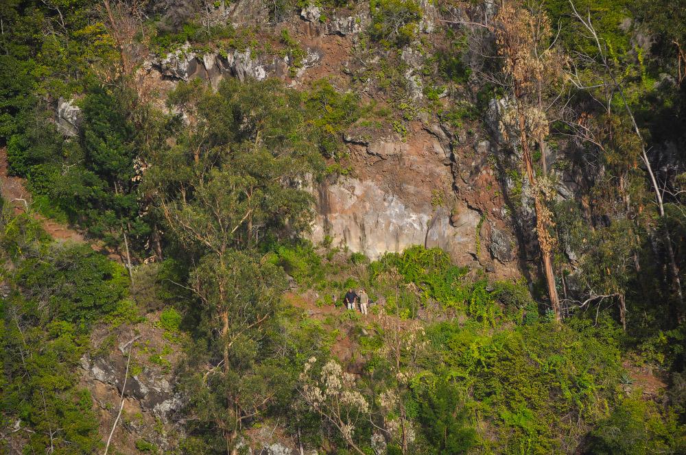 Madeira-Garten-(12).jpg