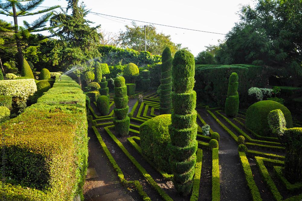 Madeira-Garten-(22).jpg
