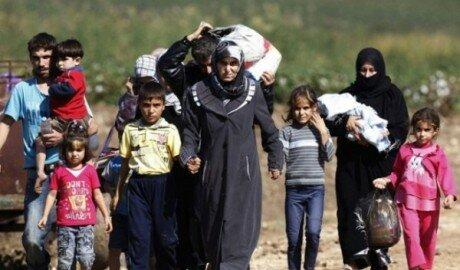 Польша готова принять 100 человек из числа беженцев в ЕС