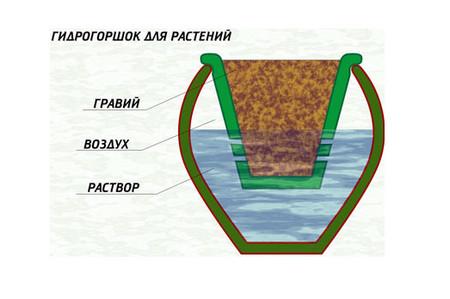 технология гидропоники
