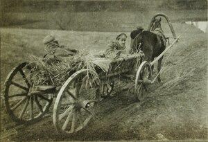 Раненые русские солдаты в телеге  на пути к базовому госпиталю.