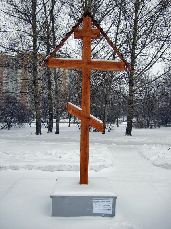 Снегопад в Москве 24 января 2015.