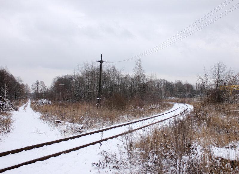 Бывший путь на бывшую станцию Дулёво