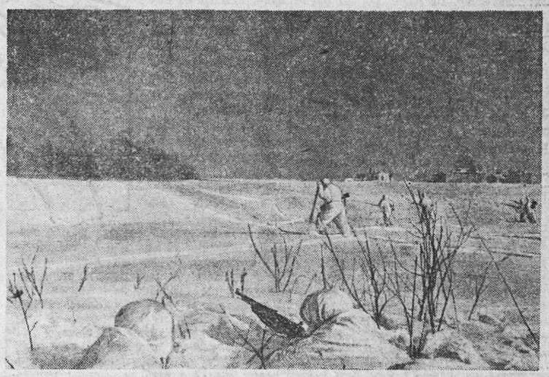 «Красная звезда», 15 марта 1942 года, как русские немцев били, потери немцев на Восточном фронте, красноармеец, Красная Армия, русский дух, русский воин