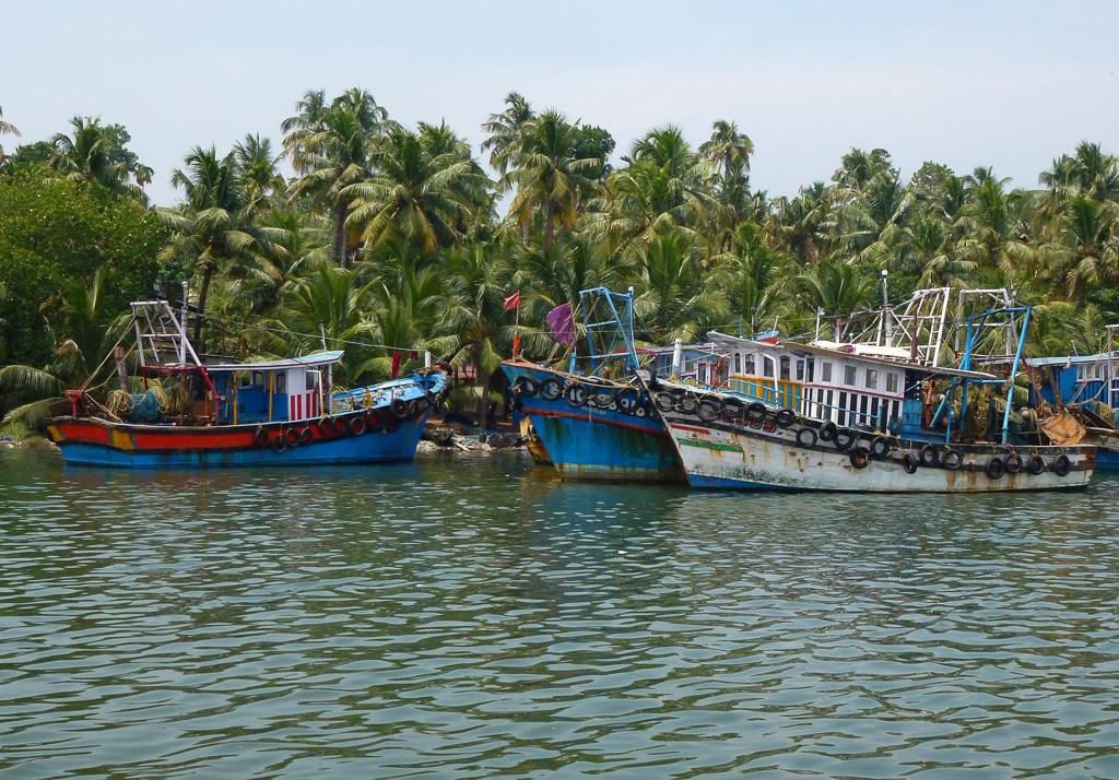 Фото 24. На озере Вембанад Каял. Отчет об экскурсии в заводи Кералы. Туры в Индию