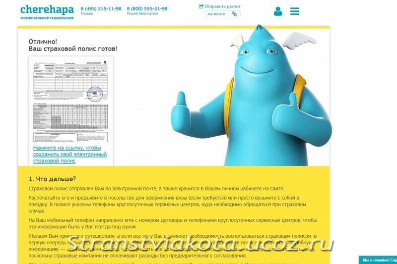 Полис страховки, оформленной он-лайн