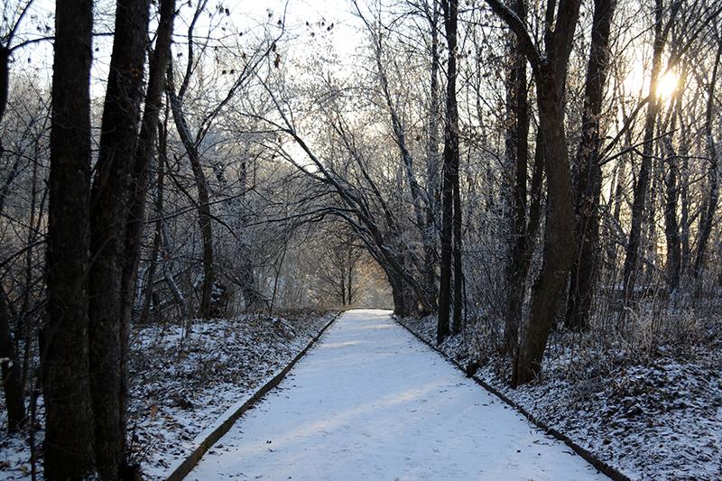 парк почти зима