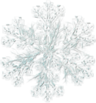 mzimm_snow_wonder_snowflake2_sh.png