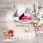00_Snowy_Holidays_Palvinka_x05.jpg