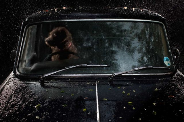 Фотопроект Мартина Асборна `The Silence of Dogs in Cars`.