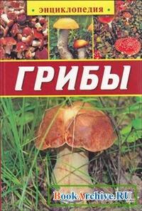 Книга Грибы (Аристамбекова Н. Е.).