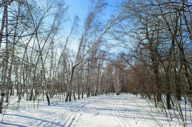 Кумысная поляна в снегах, Саратов, 23 февраля 2015 года