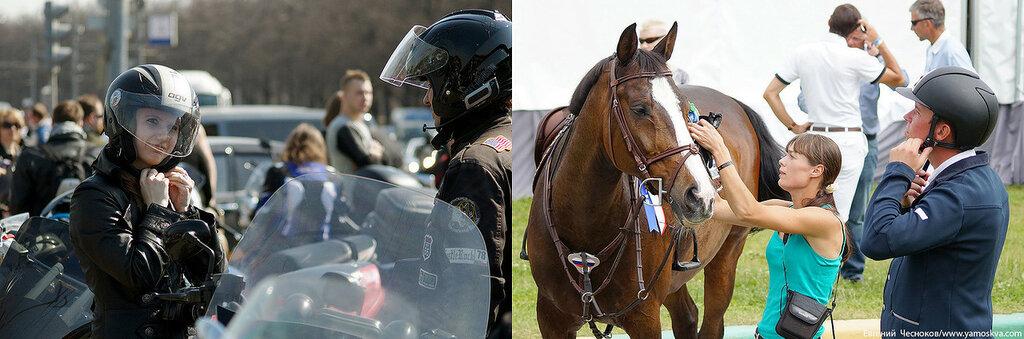 Лошади.20..jpg