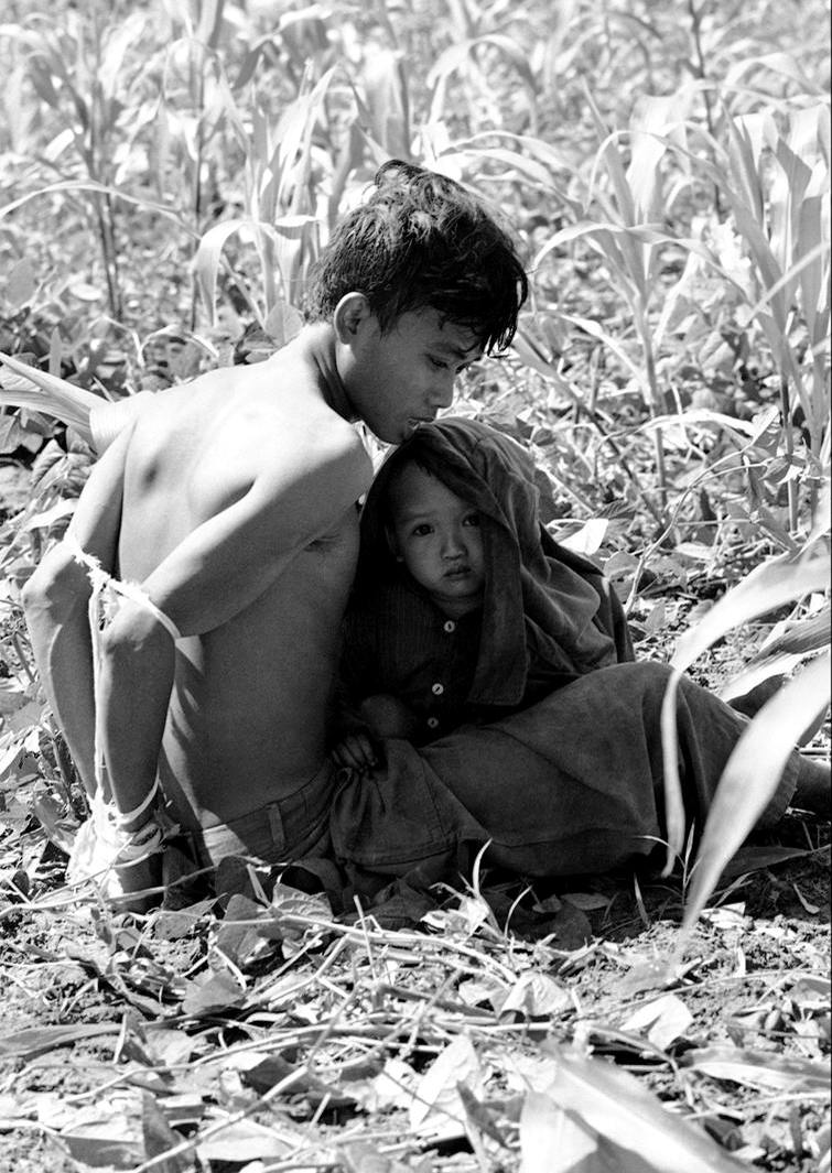 Вьетнамский ребенок цепляется за своего отца, который был задержан и связан, как подозреваемый в содействии партизанам Северного Вьетнама в 280 км северо-востоку от Сайгона