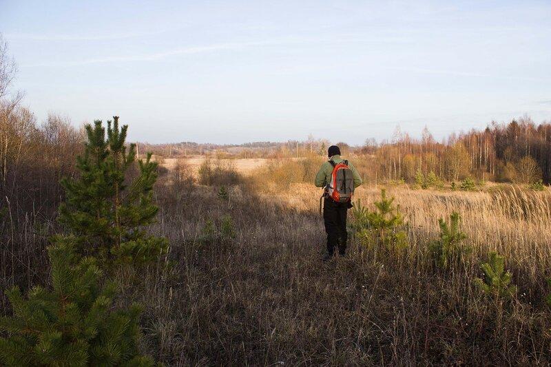 поля у деревни Молотовка
