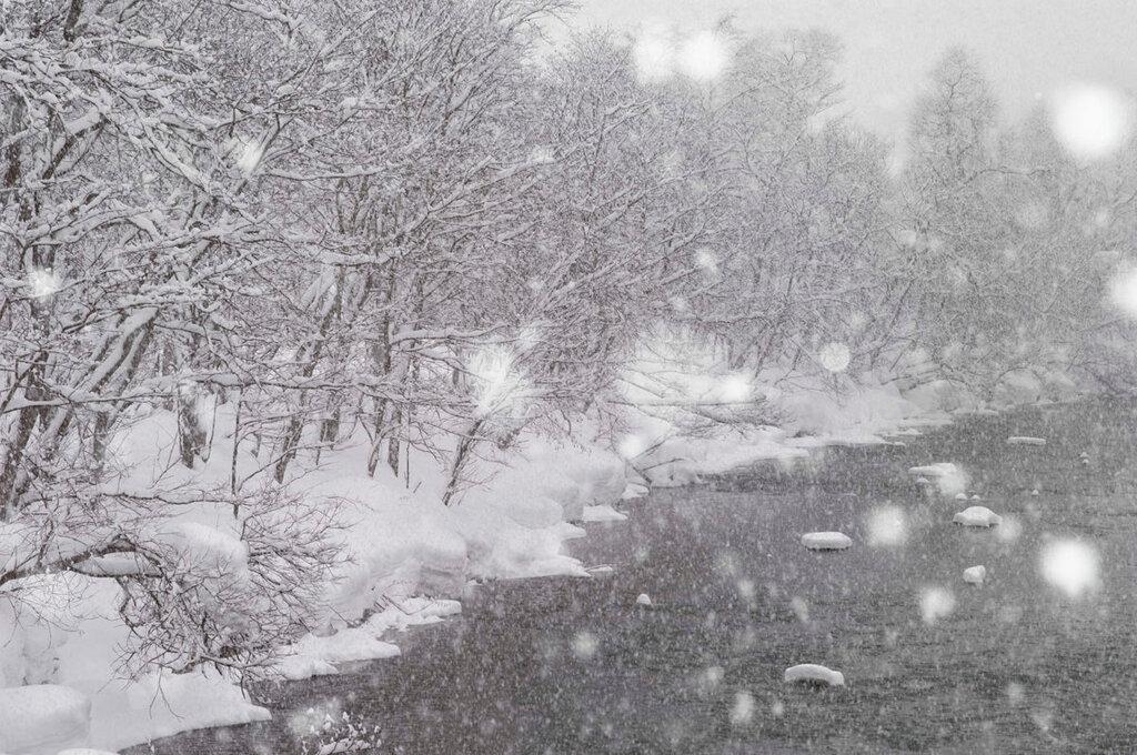 Let it snow, Asako Shimizu280.jpg