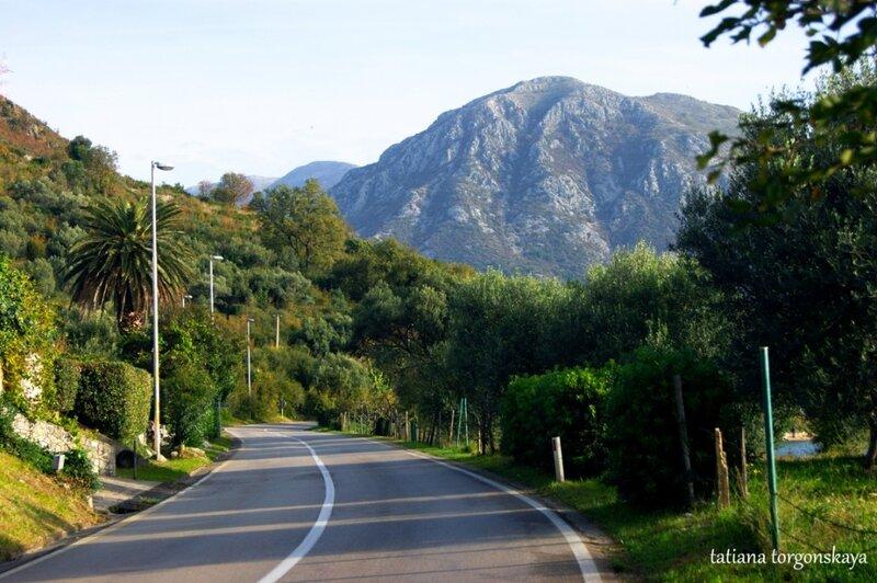 Дорога в Каменари