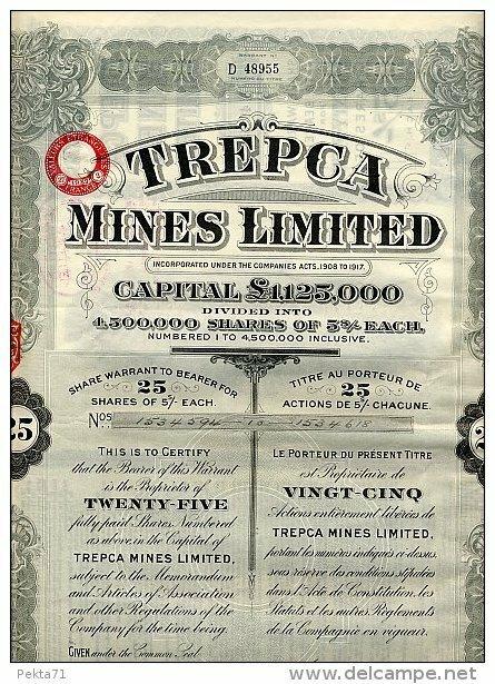 Trepca Mines Limited 1.jpg