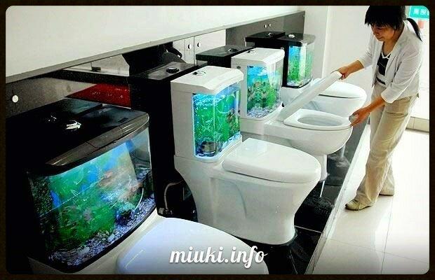 В Японии верят, что успех зависит от чистоты в туалете