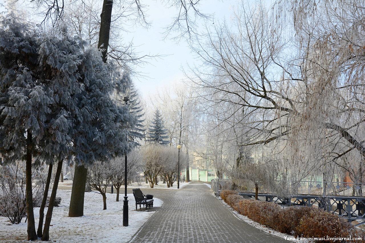Заиндевевший Гомельский парк Румянцевых и Паскевичей