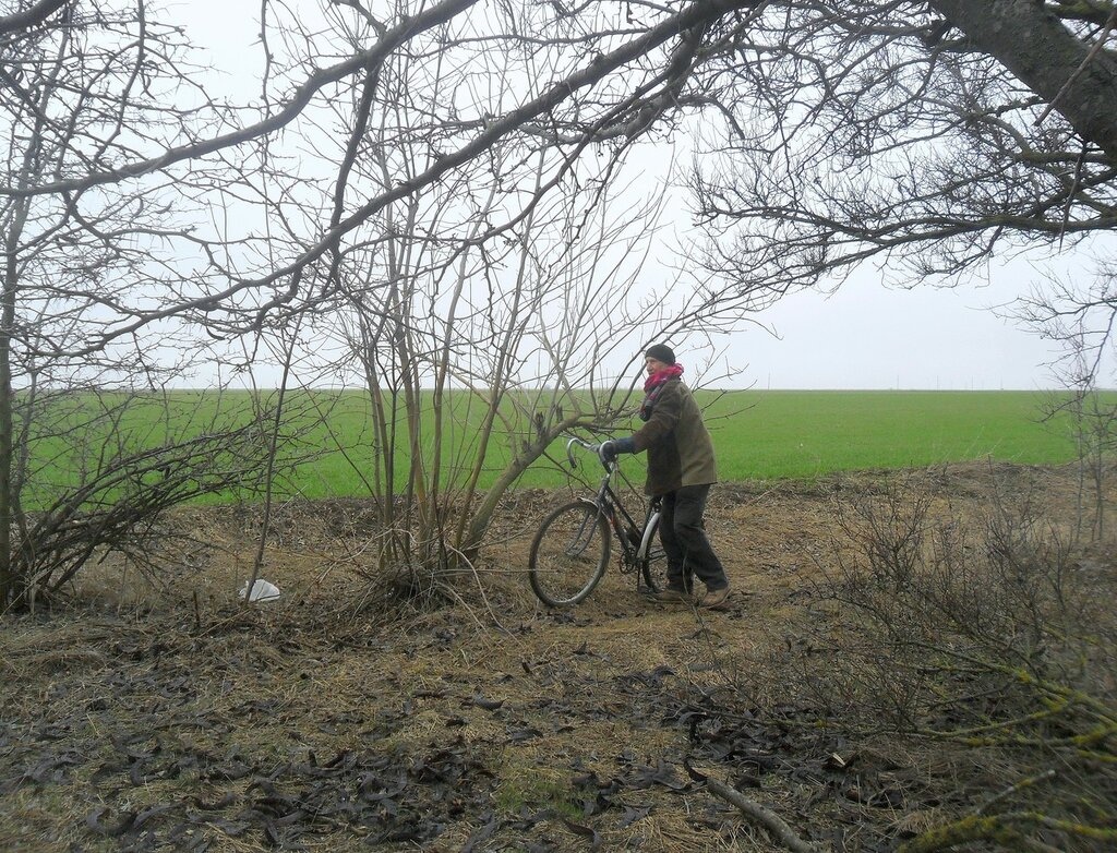 Приморско-Ахтарский район, фото, зима,  февраль 2015, велопоход