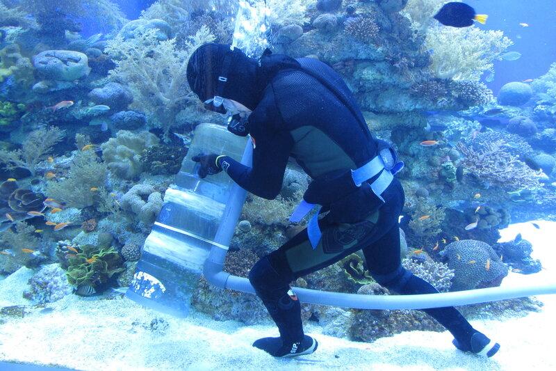 Чистка аквариума изнутри