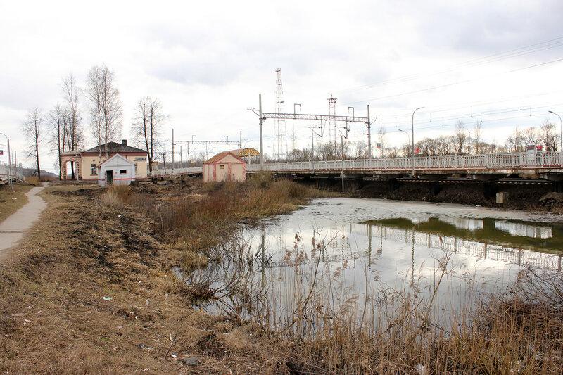Утки у платформы Поповка
