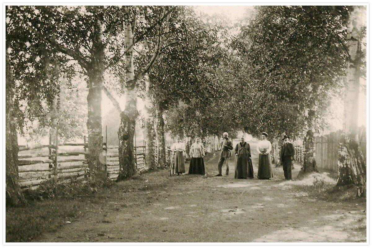 Семья Шишкиных с друзьями на прогулке в аллее около имения в Каменке на Шлино, Тверская губерния