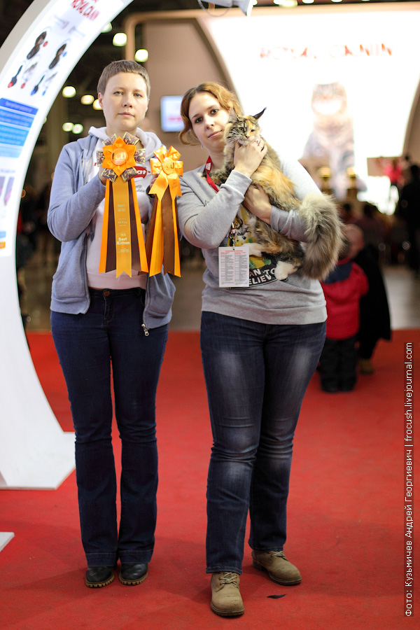выставка кошек Grand-Prix Royal Canin 2014