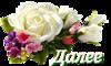 0_c9f83_82b10953_S (1).png