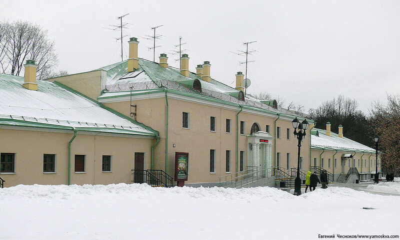 Зима. Царицыно. 1 оранжерея. 08.01.15.00..jpg