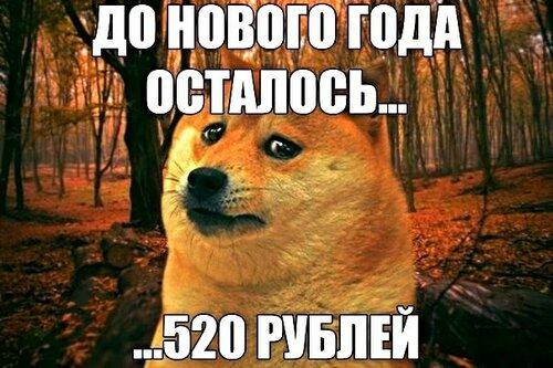 До Нового Года осталось.....520  рублей  :)))