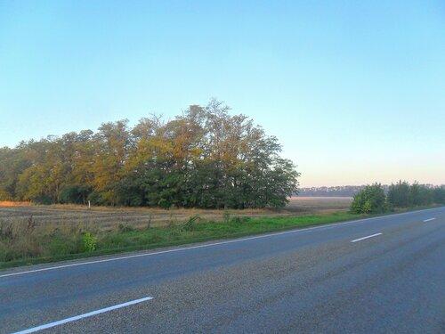 Утром, на шоссе ... SAM_3585.JPG