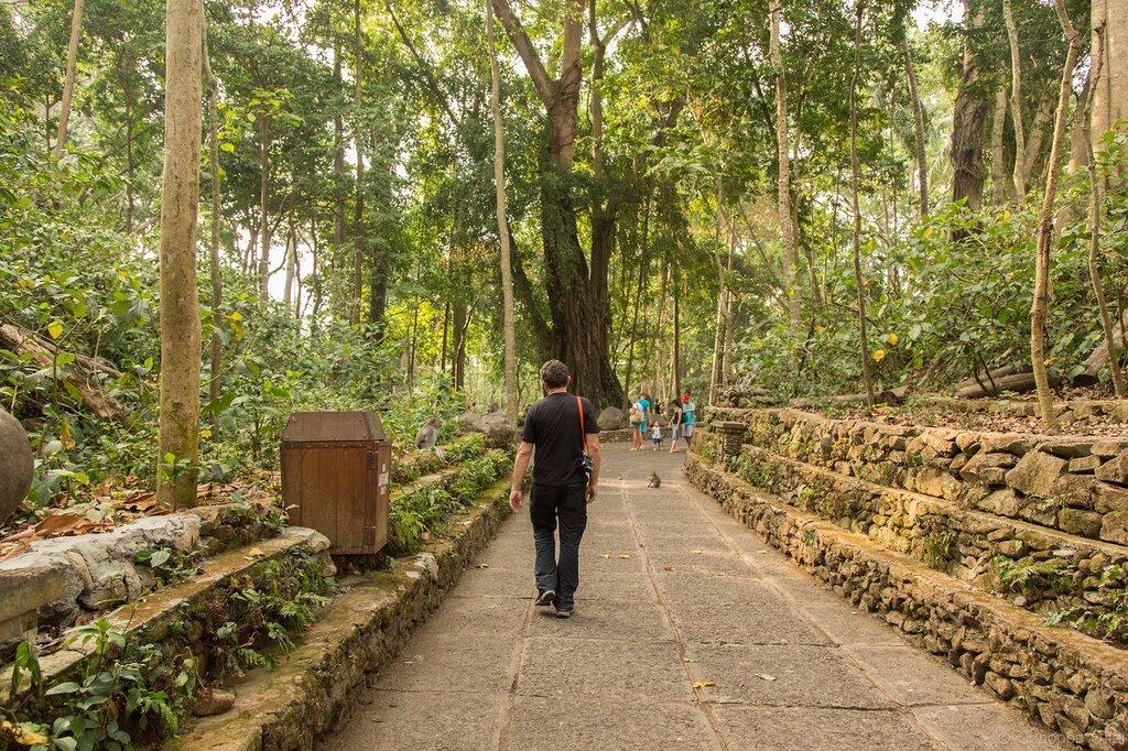 Бали ч1-161.jpg