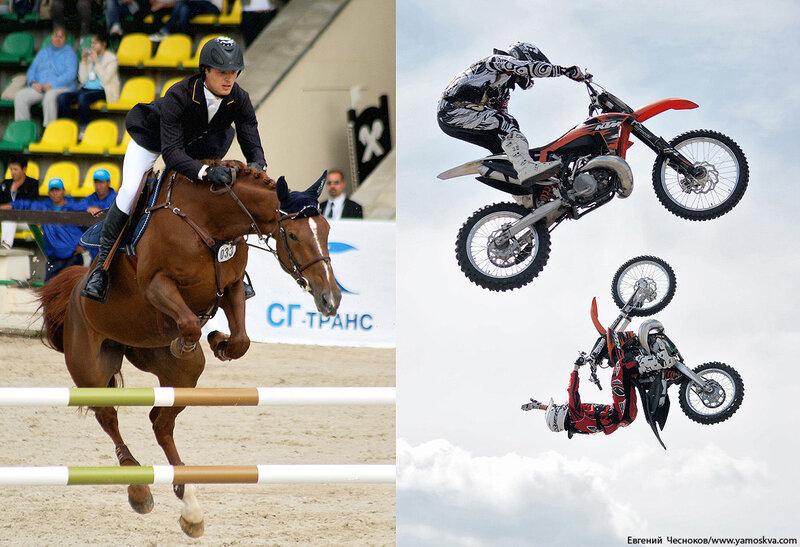Лошади.16..jpg